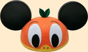 Disney OLP Travel