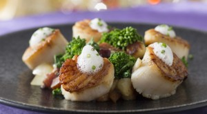 Disney Dining Seared Diver Scallops