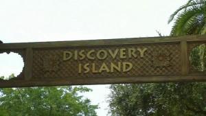 Disney News Discovery Island