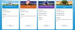 Disney Magic Bands Fast Pass Theme Parks